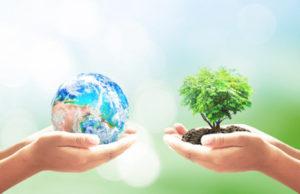 Международная олимпиада по экологии