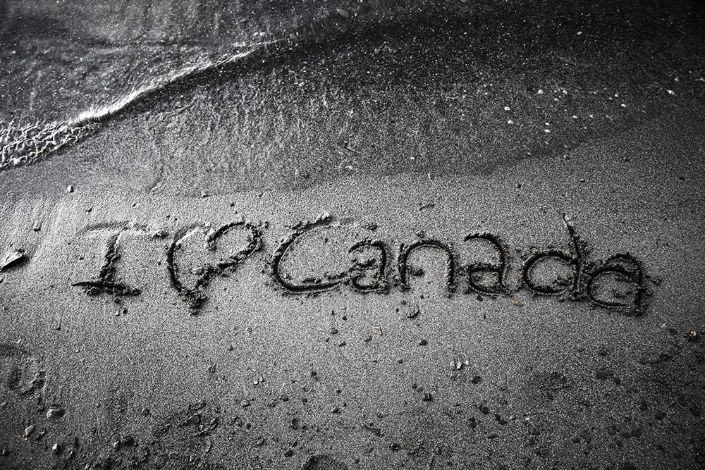 Чем обернется для студентов перевод арабов из канадских вузов