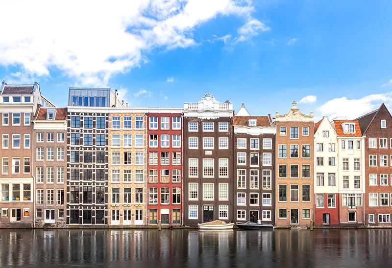 Обучение и высшее образование в Нидерландах – учебные заведения в Нидерландах – образование за рубежом