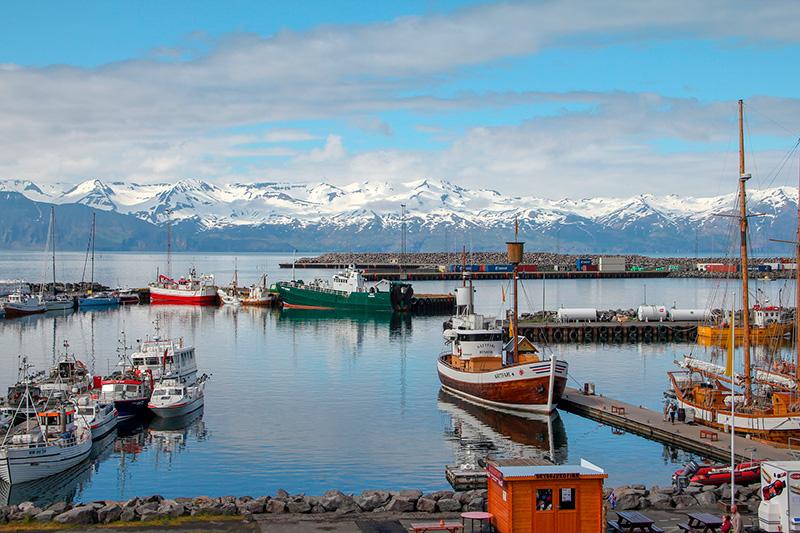 Обучение и высшее образование во Исландии – учебные заведения Исландии – образование за рубежом