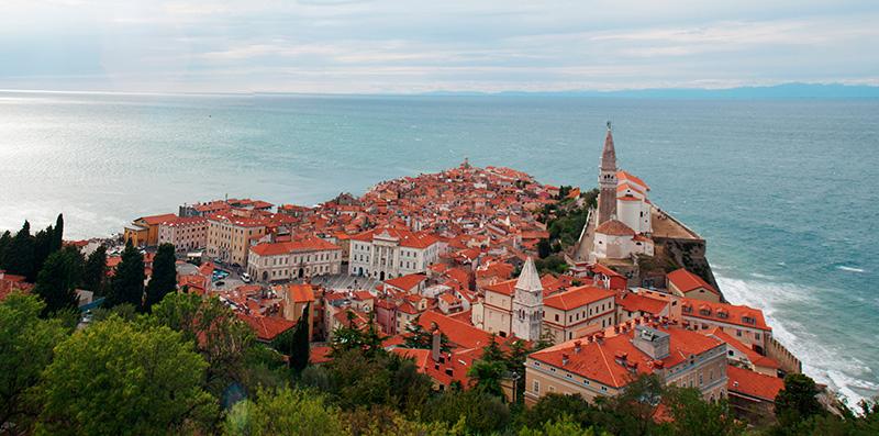 Обучение и высшее образование в Словении  – учебные заведения Словении  – образование за рубежом